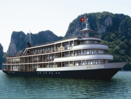 AUCO LUXURY CRUISE