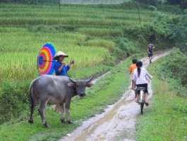 Full explorer of North and South Vietnam - 12 days / 11 nights