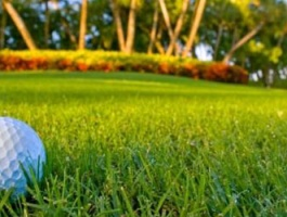 Golf Paradise Stopover - daily departure - 4 days / 3 nights